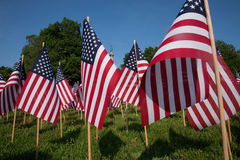 20.000 drapeaux américains Photo libre de droits