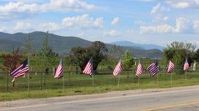 Drapeaux au cimetière images stock