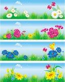 Drapeaux avec des fleurs dans le pré. illustration de vecteur