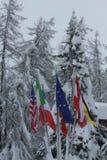 Drapeaux avec la neige Image stock