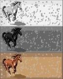 Drapeaux avec le cheval courant Photo libre de droits