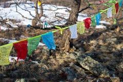 Drapeaux bouddhistes de prière au fond d'arbres d'hiver Image libre de droits