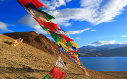 Drapeaux bouddhistes sur la montagne près de la TSO Moriri, Ladakh de lac, Photo libre de droits