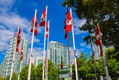 Drapeaux canadiens contre le ciel bleu dedans AVANT JÉSUS CHRIST images stock