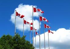 Drapeaux canadiens et nuages blancs dans le ciel Image stock