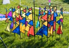 Drapeaux colorés dans la terre Images stock