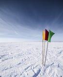 Drapeaux colorés dans le paysage neigeux Images stock