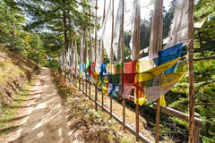 Drapeaux colorés de prière le long de cendrée Photo stock