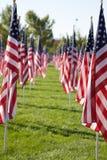 Drapeaux curatifs de 9/11 champ Images stock