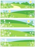 Drapeaux d'amusement Image stock