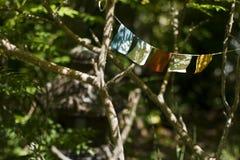 Drapeaux d'oriental de jardin Photos stock
