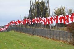 Drapeaux de Canada Photos libres de droits