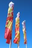Drapeaux de fête multicolores pendant des vacances Photo libre de droits