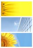 Drapeaux de fond d'été Images stock