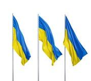 Drapeaux de l'Ukraine Photo stock