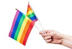 Drapeaux de la communauté de LGBT dans une main d'isolement Image stock