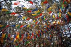 Drapeaux de ondulation colorés de prière Photos stock