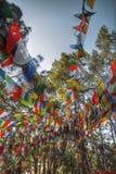 Drapeaux de ondulation colorés de prière Photographie stock libre de droits