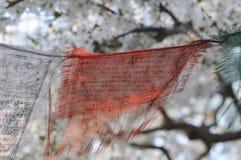 Drapeaux de prière Photo libre de droits