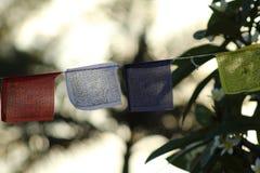 Drapeaux de prière de Himalayans Photographie stock