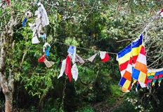 Drapeaux de prière sur l'arbre près du monastère bouddhiste images libres de droits
