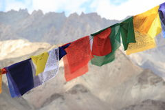 Drapeaux de prière dans Ladakh Photographie stock