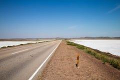Drapeaux de sel d'assèche sur la route d'été avec la ruelle blanche sous le ciel nuageux Photos libres de droits