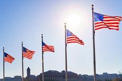 Drapeaux des Etats-Unis Photographie stock libre de droits