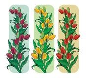 Drapeaux des tulipes. Image libre de droits