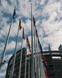 Drapeaux devant le Parlement européen à Strasbourg Photographie stock libre de droits