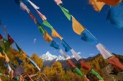 Drapeaux et montagne tib?tains color?s de neige ? la r?gion sc?nique de Siguniang, Chine photographie stock