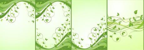 Drapeaux floraux verts Photo stock