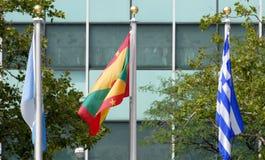 Drapeaux internationaux dans l'avant du siège des Nations Unies à New York Images libres de droits