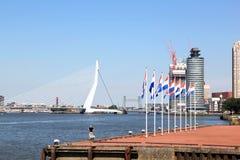 Drapeaux néerlandais le long de rivière de Nieuwe Maas, Rotterdam, Hollande Photo stock