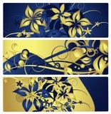 Drapeaux ou étiquettes avec la conception florale, vecteur Photos libres de droits