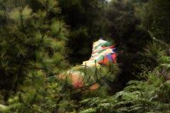 Drapeaux rêveurs de prière dans les bois Photographie stock libre de droits