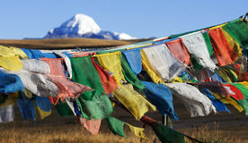 Drapeaux tibétains de prière Photographie stock libre de droits