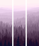 Drapeaux verticaux de bois conifére de côtes. illustration libre de droits