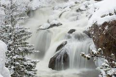 Draperend Water Stock Afbeeldingen