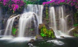 Draperende Waterval stock afbeeldingen