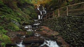 Draperende waterval in het bos Nationale park ukraine stock video