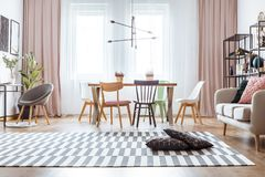 Drapes in cozy living room. Black pillows on patterned carpet and pink drapes in cozy living room interior with chairs at dining table near sofa Royalty Free Stock Photo