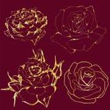 Drar upp konturerna av guld- rosor på röd bakgrund Arkivfoton