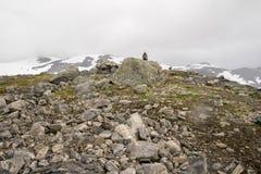 Drastische Berglandschaft in Skandinavien Stockfotografie