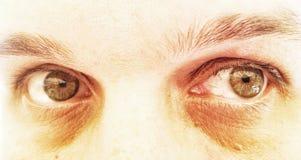 Drastische grüne Augen Stockbild