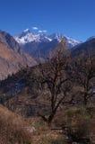 Drastische Himalajalandschaft-cc$ich Stockfoto