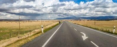 Drastische Straße nach Segovia und schöne Landschaft mit Vieh und lizenzfreie stockfotografie