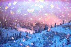 Drastische winterliche Szene mit schneebedeckten Bäumen lizenzfreie stockfotos