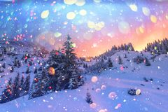 Drastische winterliche Szene mit schneebedeckten Bäumen lizenzfreies stockbild