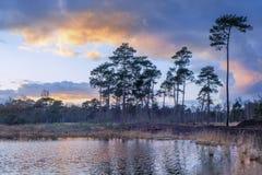 Drastische Wolken über einem Sumpfgebiet in der Dämmerung, die Niederlande lizenzfreie stockfotografie